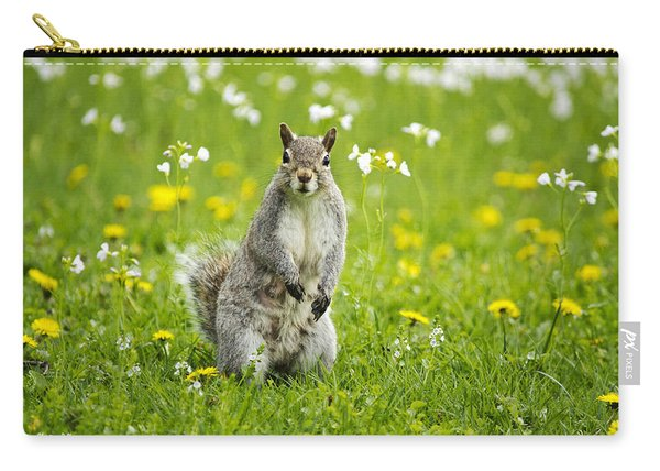 Squirrel Patrol Carry-all Pouch