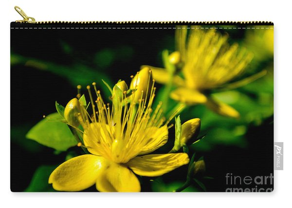 Carry-all Pouch featuring the photograph St John's Wort by Scott Lyons