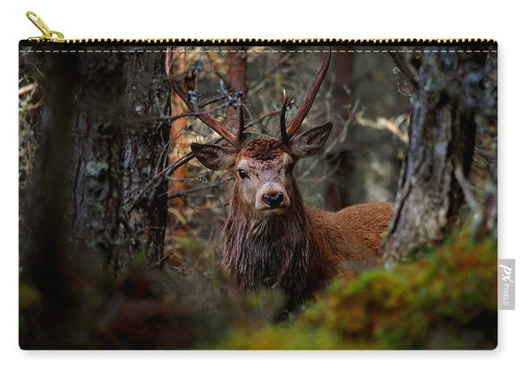 Stag In The Woods Carry-all Pouch