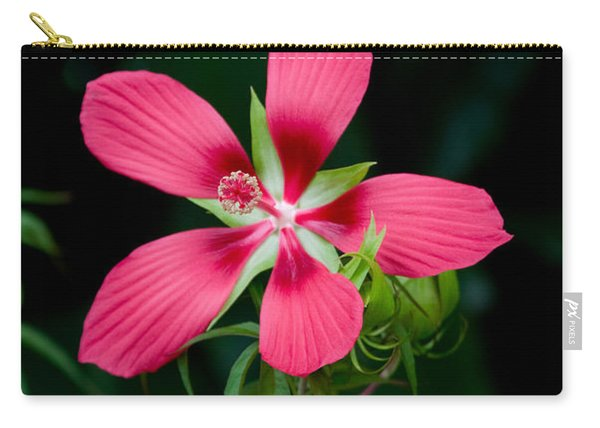 Star Hibiscus Bloom Carry-all Pouch