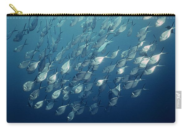 Steel Pompano Schooling Galapagos Carry-all Pouch