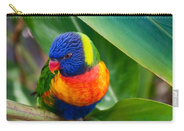 Striking Rainbow Lorakeet Carry-all Pouch