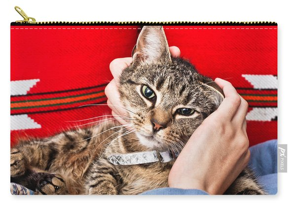 Stroking A Cat Carry-all Pouch