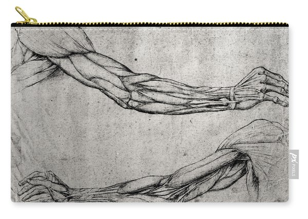 Study Of Arms Carry-all Pouch