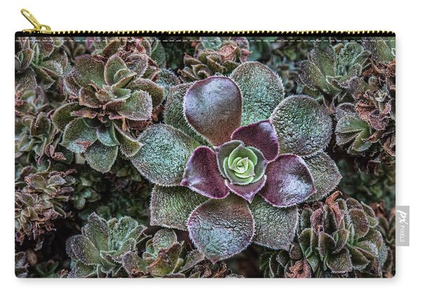 Succulent Art Carry-all Pouch