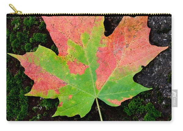 Sugar Maple Leaf Carry-all Pouch