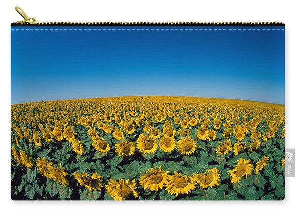 Sunflowers Helianthus Annuus In A Field Carry-all Pouch