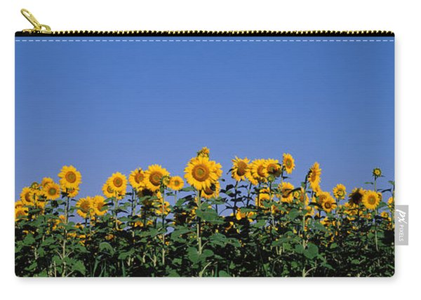 Sunflowers In A Field, Marion County Carry-all Pouch