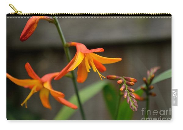 Carry-all Pouch featuring the photograph Sunny Crocosmia by Scott Lyons