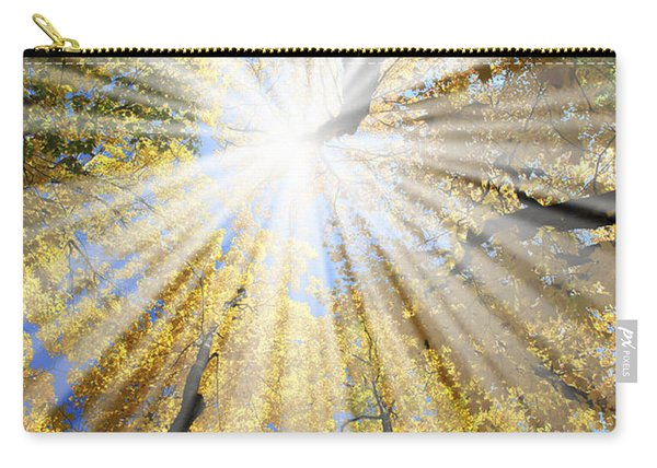 Sunrays In The Forest Carry-all Pouch