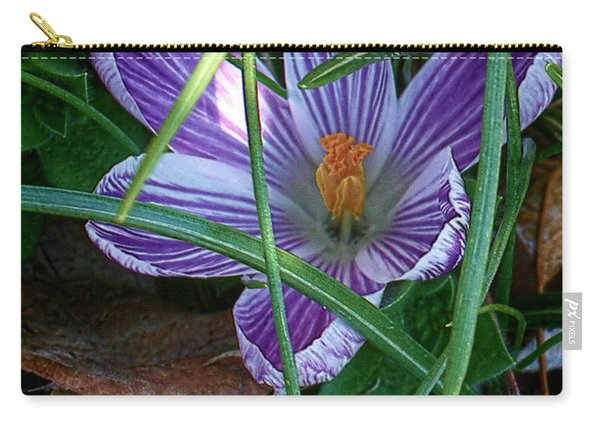 Sunshine And Crocus Carry-all Pouch