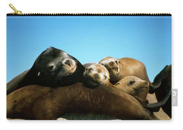 Surface Level View Of California Sea Carry-all Pouch