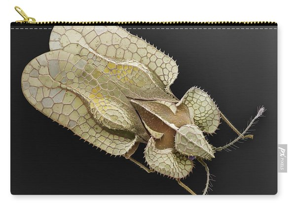 Sycamore Lace Bug Sem Carry-all Pouch