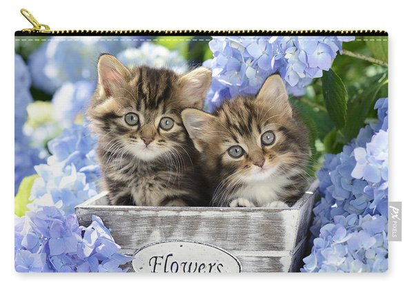 Tabbies Carry-all Pouch