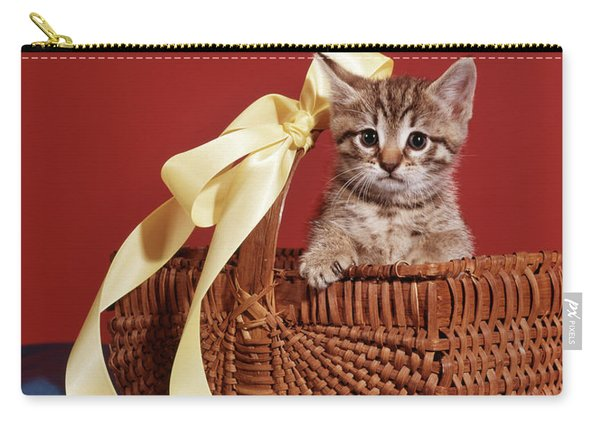 Tabby Cat Kitten Looking At Camera Carry-all Pouch
