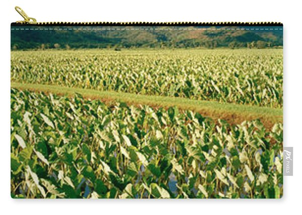 Taro Crop In A Field, Hanalei Valley Carry-all Pouch