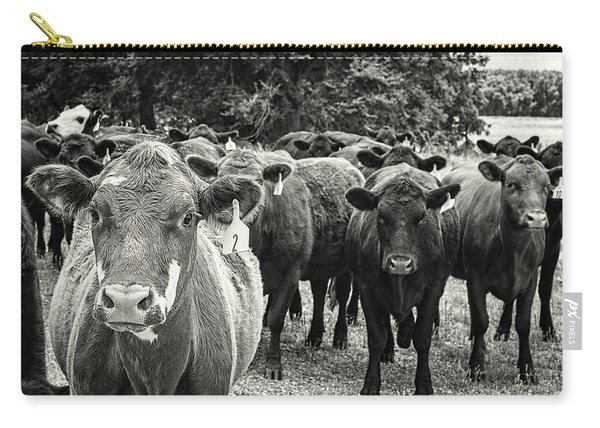 Tennessee Cattle Carry-all Pouch