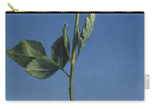 Tenuous Still-life 1 Carry-all Pouch