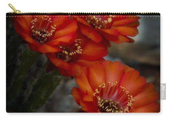 The Beauty Of Red Carry-all Pouch