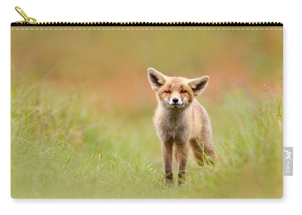 The Funny Fox Kit Carry-all Pouch
