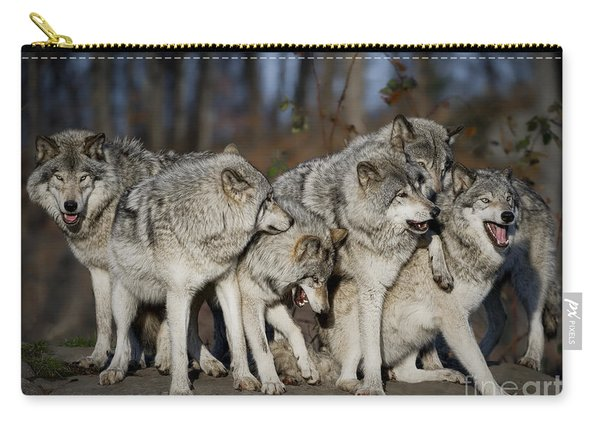 The Gang Carry-all Pouch
