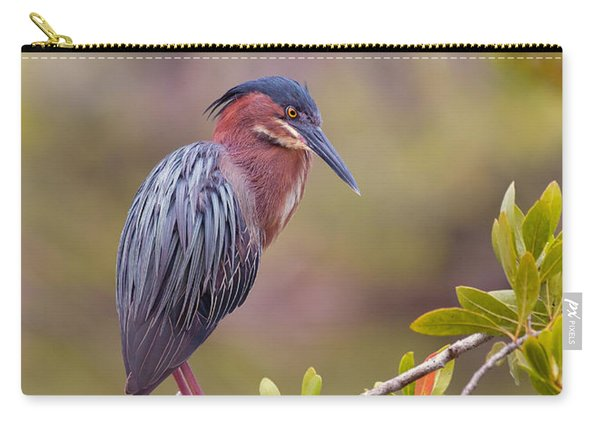 The Green Heron At Blue Hole Carry-all Pouch