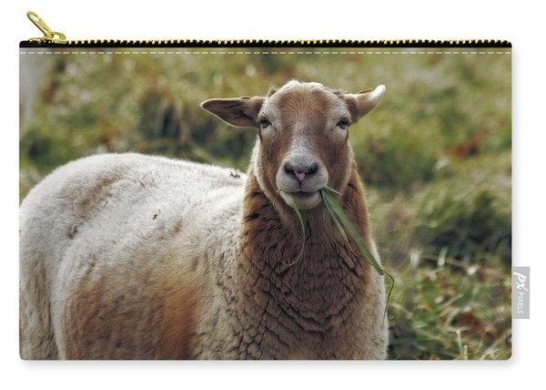 Feed My Sheep Carry-all Pouch