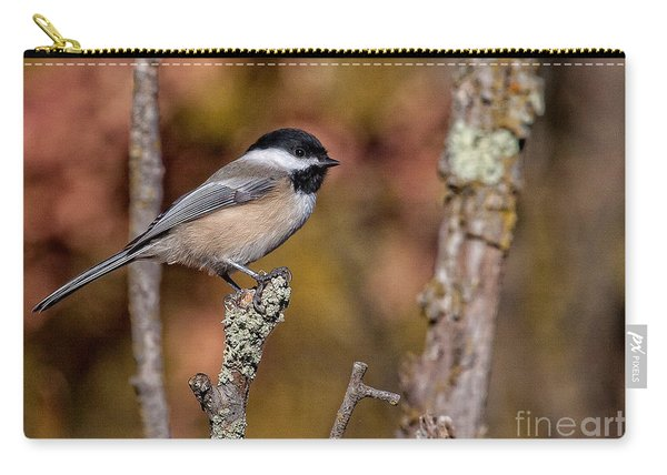 The Perch Carry-all Pouch