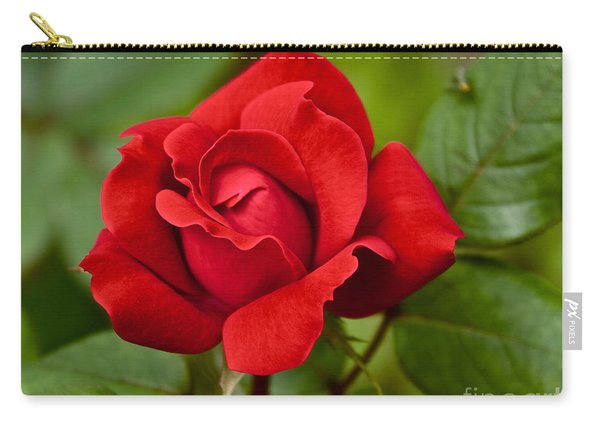Carry-all Pouch featuring the photograph The Rose by William Norton