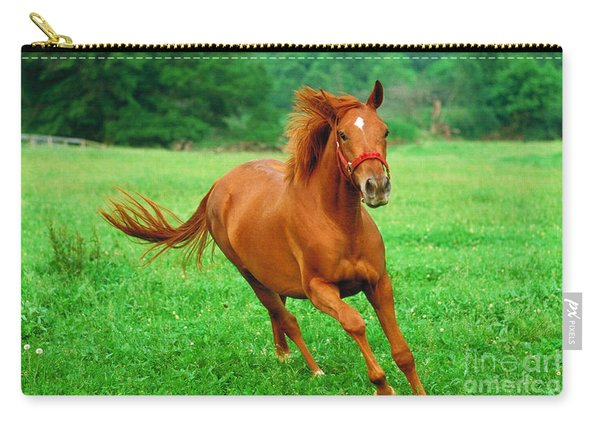 Thoroughbred Filly Carry-all Pouch