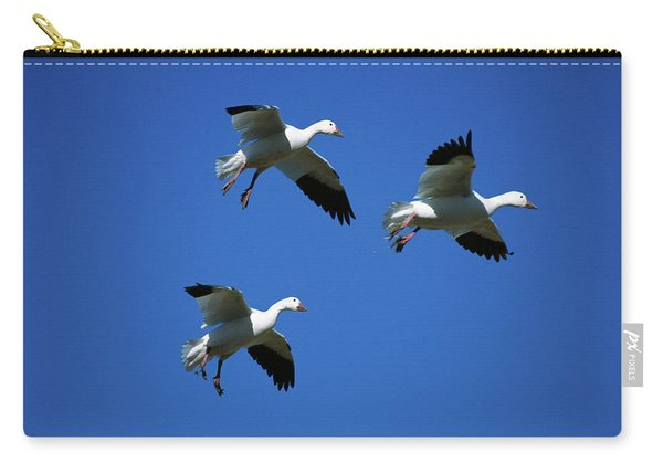 Three Snow Geese In Flight, Blue Sky Carry-all Pouch