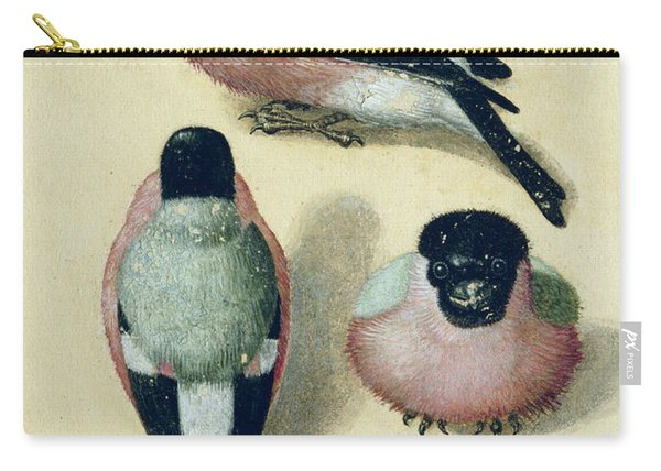 Three Studies Of A Bullfinch Carry-all Pouch