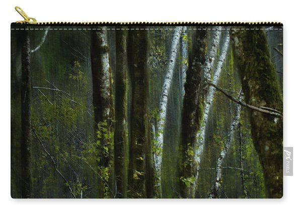 Through A Glass . . . Darkly Carry-all Pouch