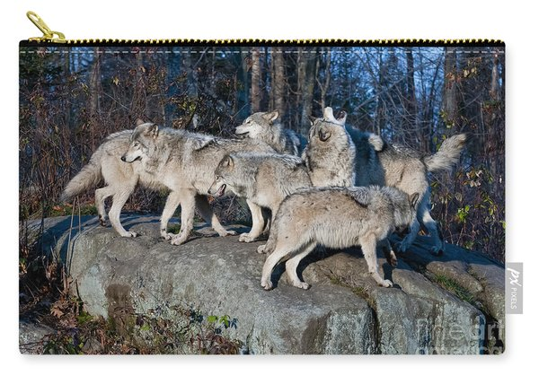 Timber Wolf Pack Carry-all Pouch