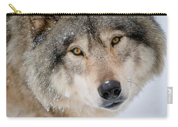 Timber Wolf Pictures 255 Carry-all Pouch