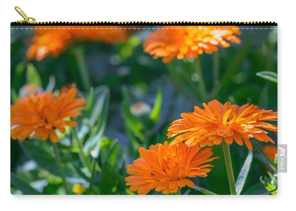 Carry-all Pouch featuring the photograph Touch By Light by Garvin Hunter
