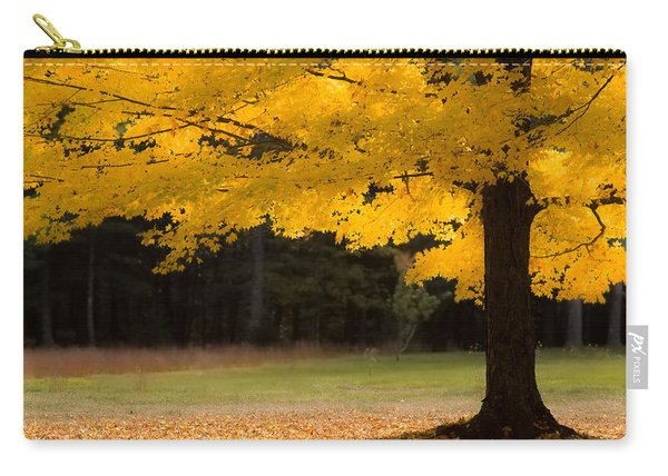 Tree Canopy Glowing In The Morning Sun Carry-all Pouch