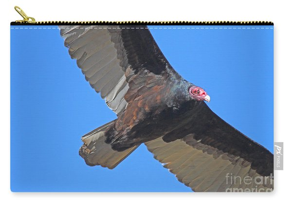 Turkey Vulture In Flight - 7d21180 Carry-all Pouch