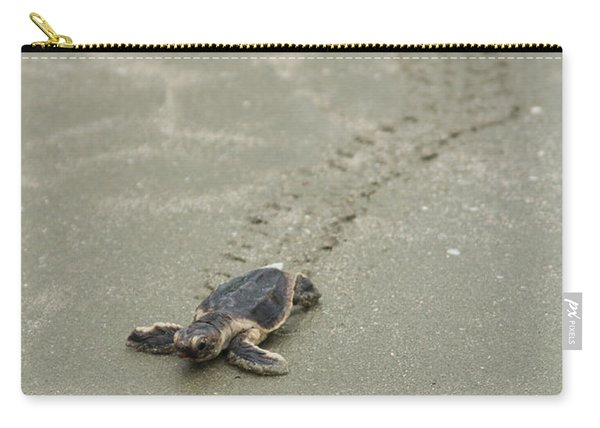 Turtle Tracks Carry-all Pouch