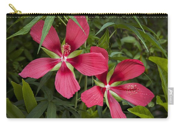 Twin Texas Star Hibiscus Carry-all Pouch