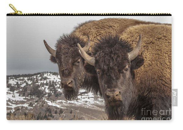 Two Bison Carry-all Pouch