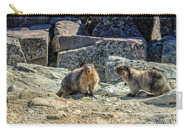 He And She Carry-all Pouch