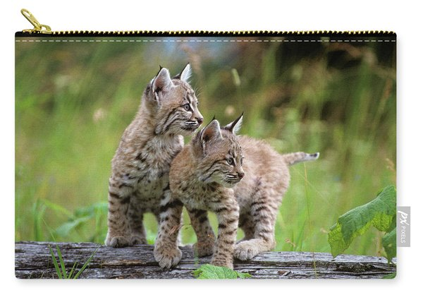 Two Young Bobcats On Log Lynx Rufus Carry-all Pouch