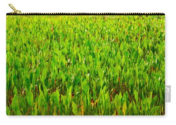 Vegetation, Boynton Beach, Florida, Usa Carry-all Pouch