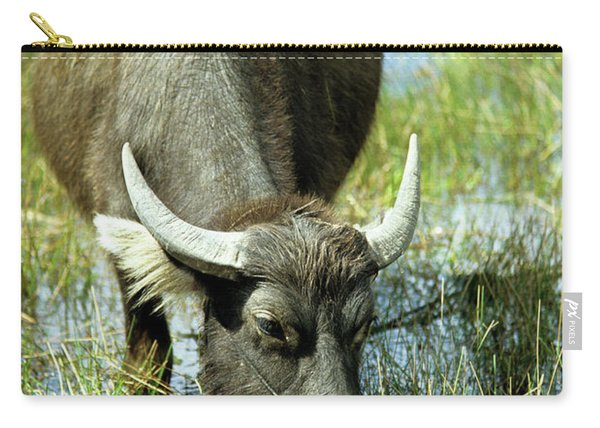 Water Buffalo Carry-all Pouch