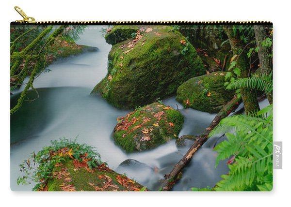 Whatcom Falls 1 Carry-all Pouch