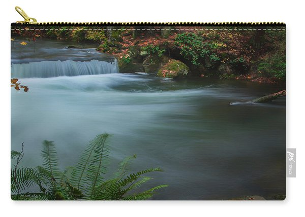 Whatcom Falls Park Carry-all Pouch