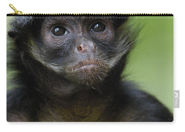 White-bellied Spider Monkey Amazonia Carry-all Pouch