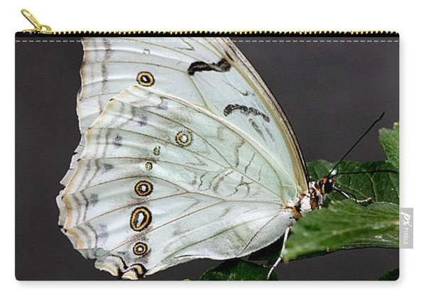 White Butterfly Carry-all Pouch