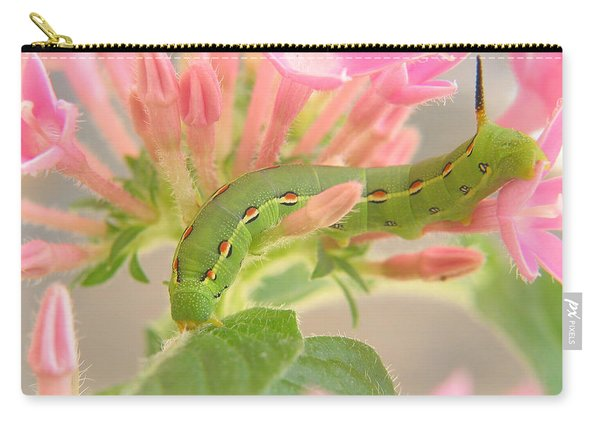 White-lined Sphinx Moth Caterpillar Carry-all Pouch